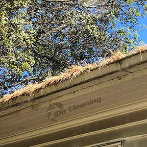 gutter cleaning, iDo cleaning
